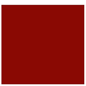 Muy Honorable Cofradía Internacional de Caballeros de Don Quijote